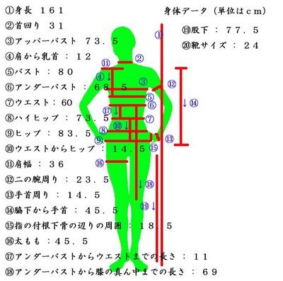 データのコピー.jpg