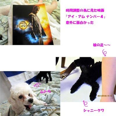 0724のコピー.jpg