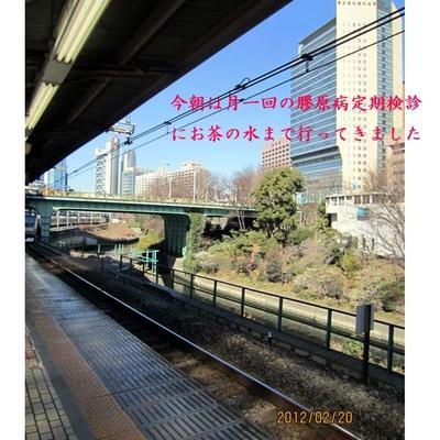 0220のコピー.jpg
