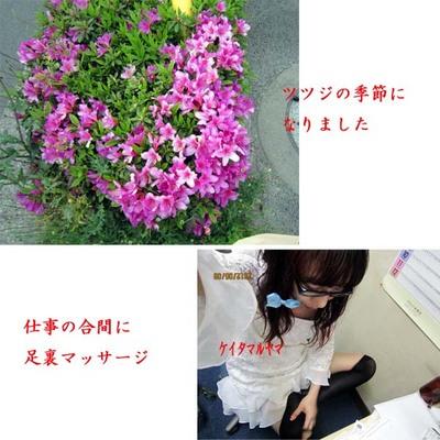 0509のコピー.jpg