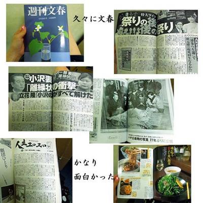20120621-2のコピー.jpg